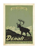 Denali National Park II Poster by  Anderson Design Group
