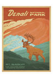 Denali Nationalpark Posters af Anderson Design Group