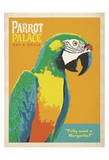 Parrot Palace Art by  Anderson Design Group