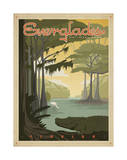 Everglades National Park Prints by  Anderson Design Group