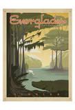 Florida Everglades Poster di  Anderson Design Group