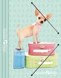 Dog Folder Objet Insolite