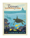 Biscayne National Park In The Florida Keys Prints by  Anderson Design Group