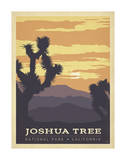 Joshua Tree National Park, California Art by  Anderson Design Group
