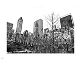 Central Park Winter Photographic Print by Nigel Barker