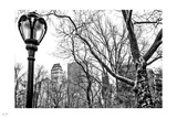 Central Park Winter III Photographic Print by Nigel Barker