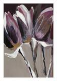 Aubergine Splendor I Plakater af Angela Maritz