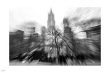 Radial Park II Photographic Print by Nigel Barker