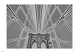 Iron Net III Photographic Print by Nigel Barker