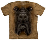 Youth: Mastiff Face T-shirts