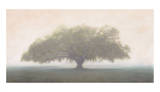 Oak in the Fog Art by William Guion