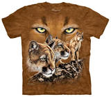Youth: Find 10 Cougars T-shirts