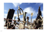 Flotsam 2 Photographic Print by Nigel Barker