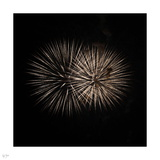 Space Urchin Photographic Print by Nigel Barker