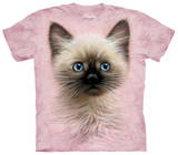 Youth: Black & Tan Kitten T-Shirt