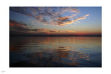 Reflect Photographic Print by Nigel Barker
