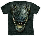 Youth: Gator Head T-shirts