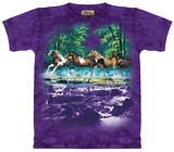 Youth: Spring Creek Run T-Shirt