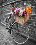 Basket of Flowers II Poster by Assaf Frank