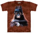 Youth: Orangutan Baby T-shirts