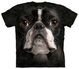 Youth: Boston Terrier Face T-shirts