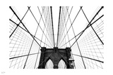 Iron Net II Photographic Print by Nigel Barker