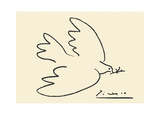 La paloma de la paz Lámina por Pablo Picasso