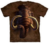 Youth: Mammoth Shirts