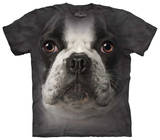 Youth: French Bulldog Face T-shirts