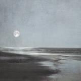 Moonlit Beach Posters by Ily Szilagyi