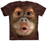 Youth: Big Face Baby Orangutan Shirts