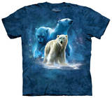 Youth: Polar Collage T-Shirts