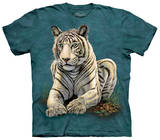 Youth: Tiger Gaze Shirts