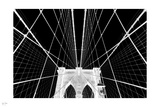 Iron Net Photographic Print by Nigel Barker