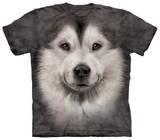 Youth: Alaskan Malamute Face T-shirty
