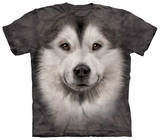 Youth: Alaskan Malamute Face Shirts