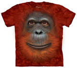 Youth: Orangutan Face T-Shirt