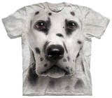 Youth: Dalmation Face T-shirts