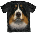 Youth: Bernese Mountain Dog Face T-shirts