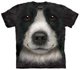 Youth: Border Collie Face T-shirts