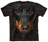 Youth: Dachshund Face T-shirts