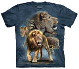 Youth: Lion Collage Shirts