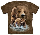 Youth: Find 10 Brown Bear T-Shirts