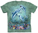Youth: Find 12 Dolphins T-shirts