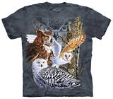Youth: Find 11 Owls T-Shirts