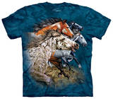 Youth: Find 13 Horses T-shirts