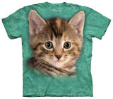 Youth: Striped Kitten Shirts