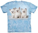 Youth: Cloud Kittens T-shirts