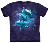 Youth: Dolphin Collage T-shirts