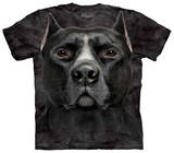 Youth: Black Pitbull Head Shirts